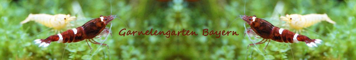 Garnelengarten