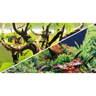 Hobby Hintergrund Green Secret/Wood Island 60x30 cm