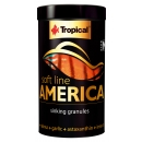 Tropical Soft Line America Size M 100 ml
