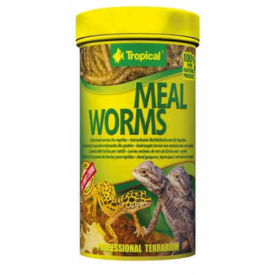 Tropical Meal Worms 100 ml