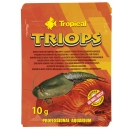 Tropical Triops 10 g